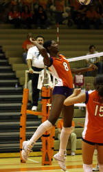 #24 Volleyball Suffers 3-0 Loss At Virginia On Friday Night