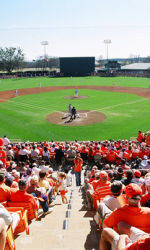 Tiger Baseball to Play Three Orange & Purple Games From October 19-22