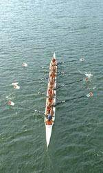 Novice 8+ Named ACC Crew of the Week