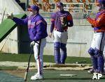 Tiger Baseball to Play Two Orange & Purple Games This Weekend