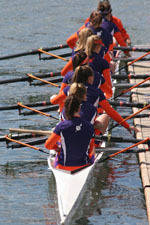 Tiger Rowing Concludes Season at Aramark Central/South Sprints