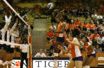 Tigers Defeat Duke, 3-1, In Saturday Volleyball Action