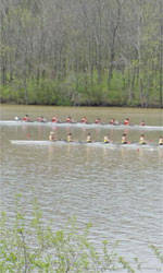 Clemson Rowing Competes In Novice Championships