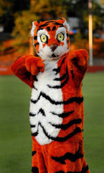 Clemson Tiger Mascot to be Featured in ESPN.com's New TV Spot