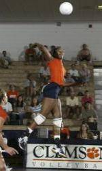 Volleyall Set to Begin 25th Annual ACC Volleyball Championship
