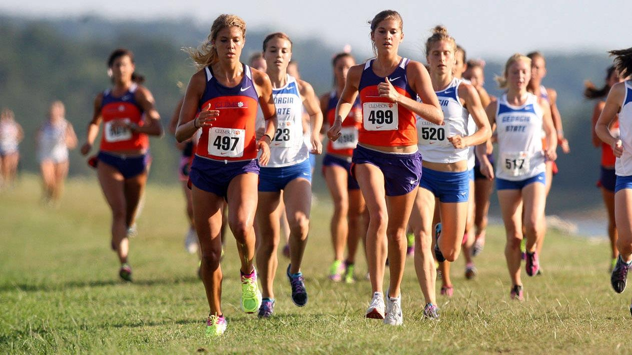 Four Tigers Named To All-ACC Academic Cross Country Teams