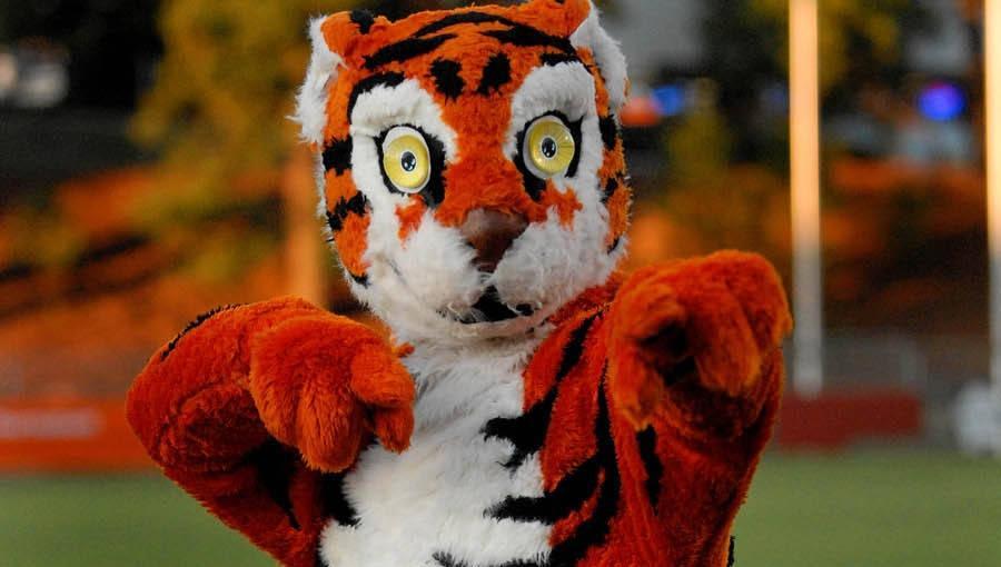 Tiger Fans Encouraged to Show Their Pride during Spirit Blitz Week