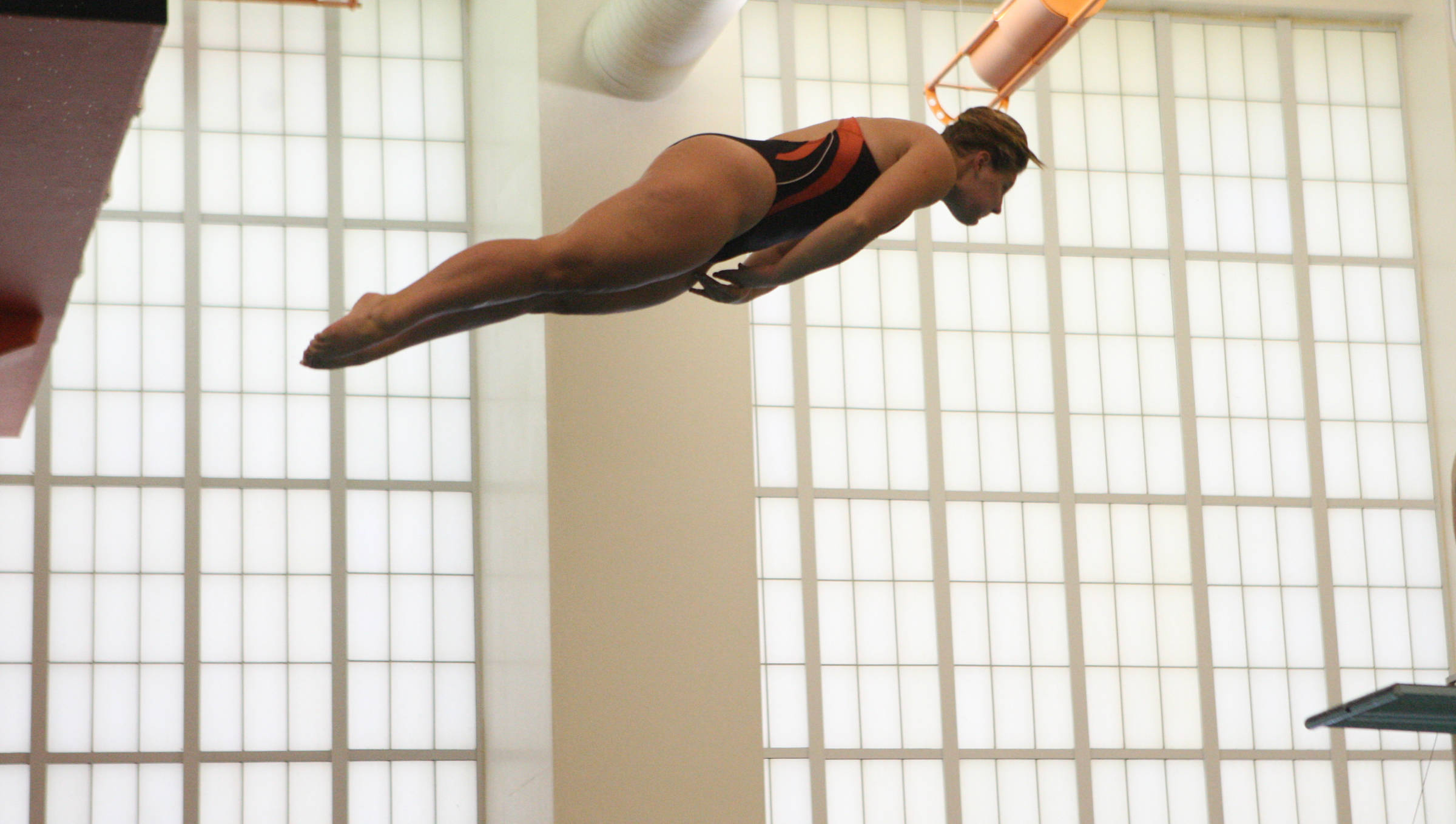 Diving Exhibition Gives Fans First Taste of New Program