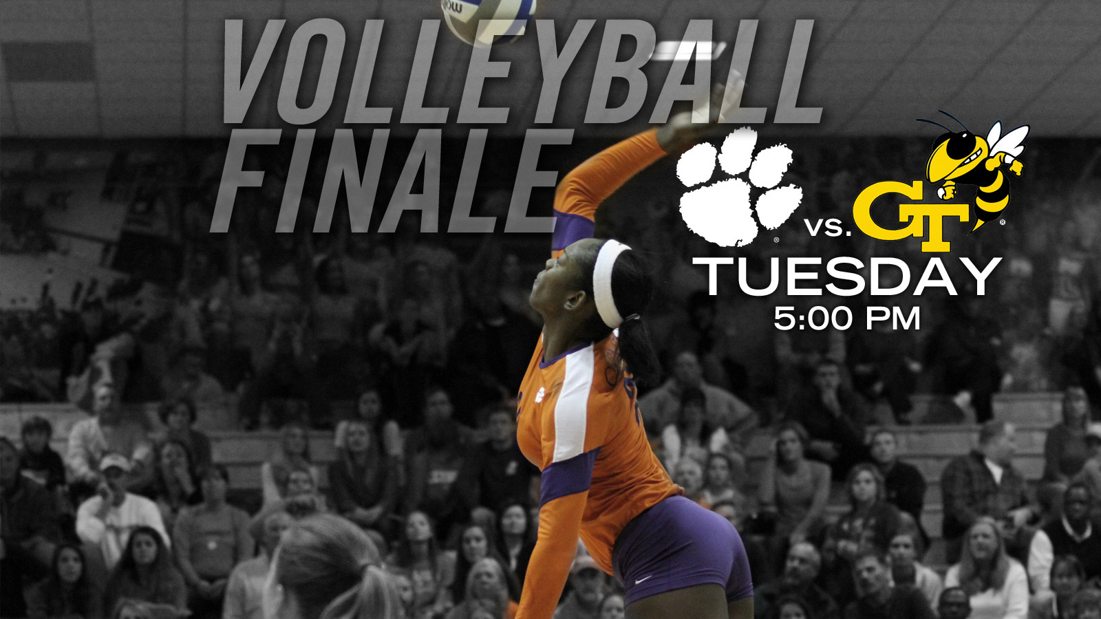 Volleyball Plays Host to Yellow Jackets in Regular-Season Finale