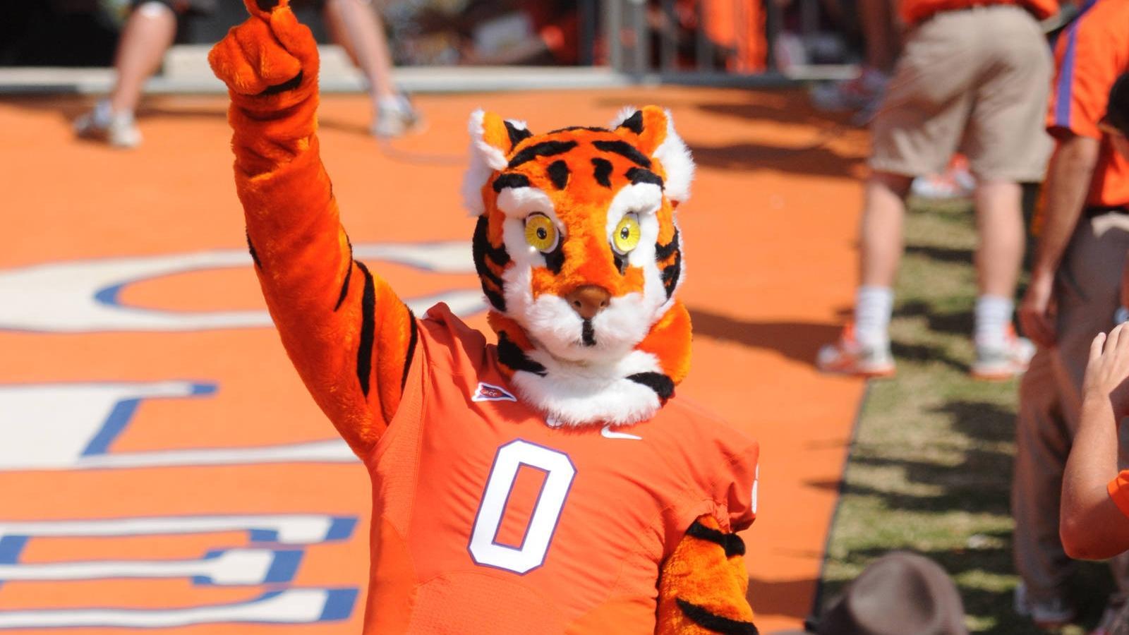The Tiger & Tiger Cub Mascot Tradition