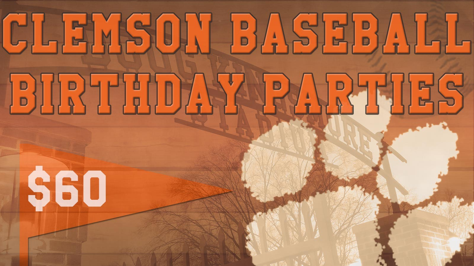 Celebrate Your Birthday with Clemson Baseball