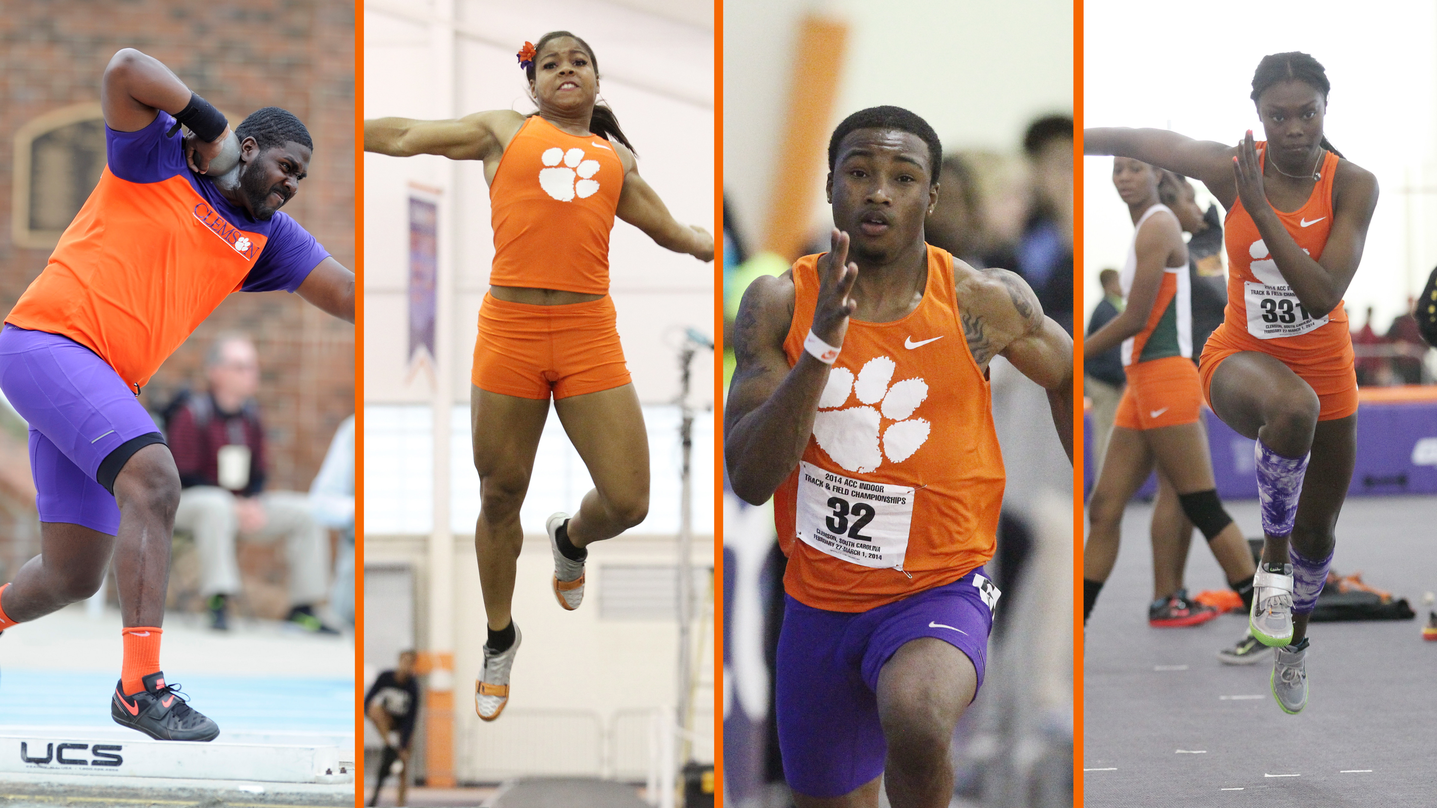 Tigers Earn Double Digit Bids to NCAA East Preliminary Round