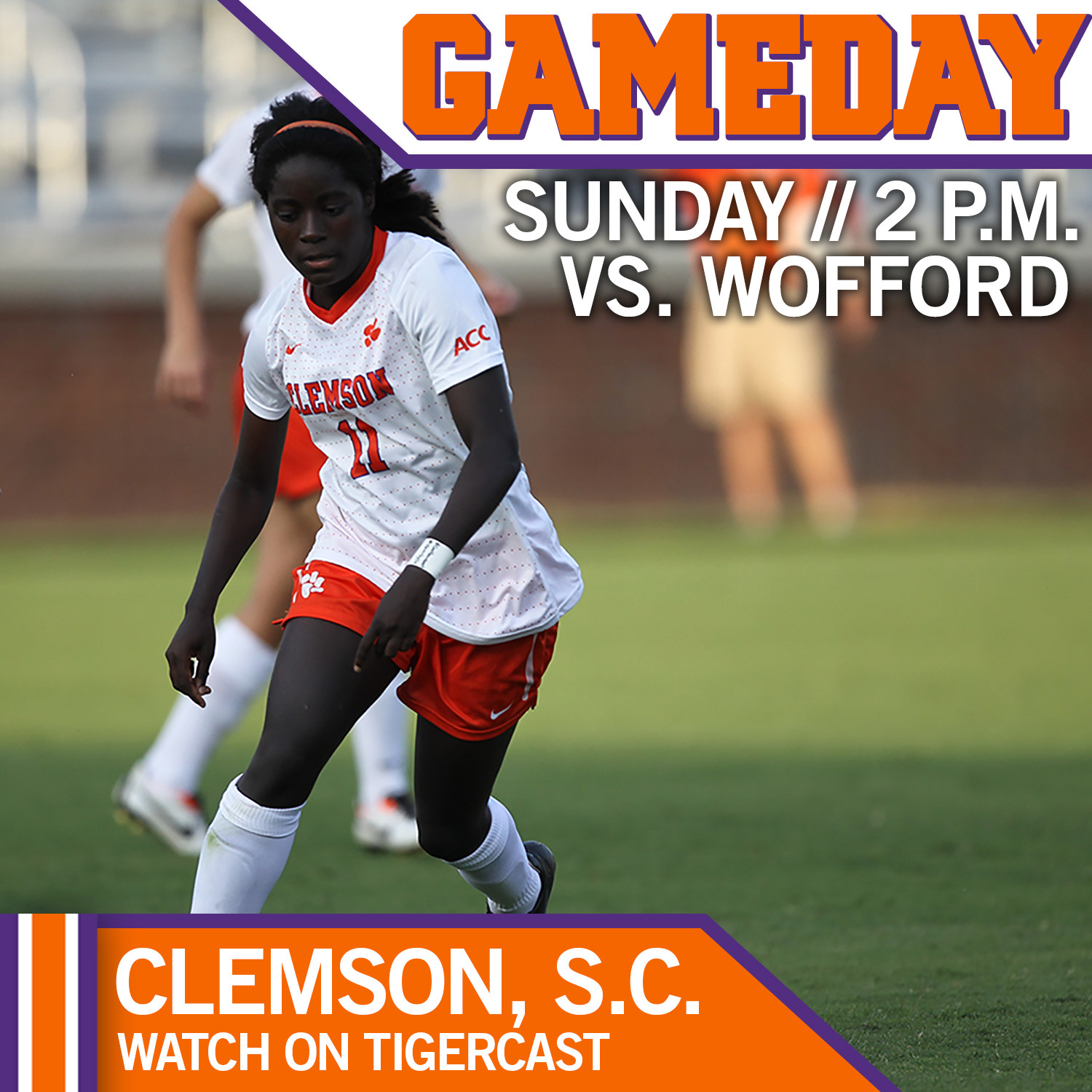 #17 Tigers Host Wofford Sunday Afternoon