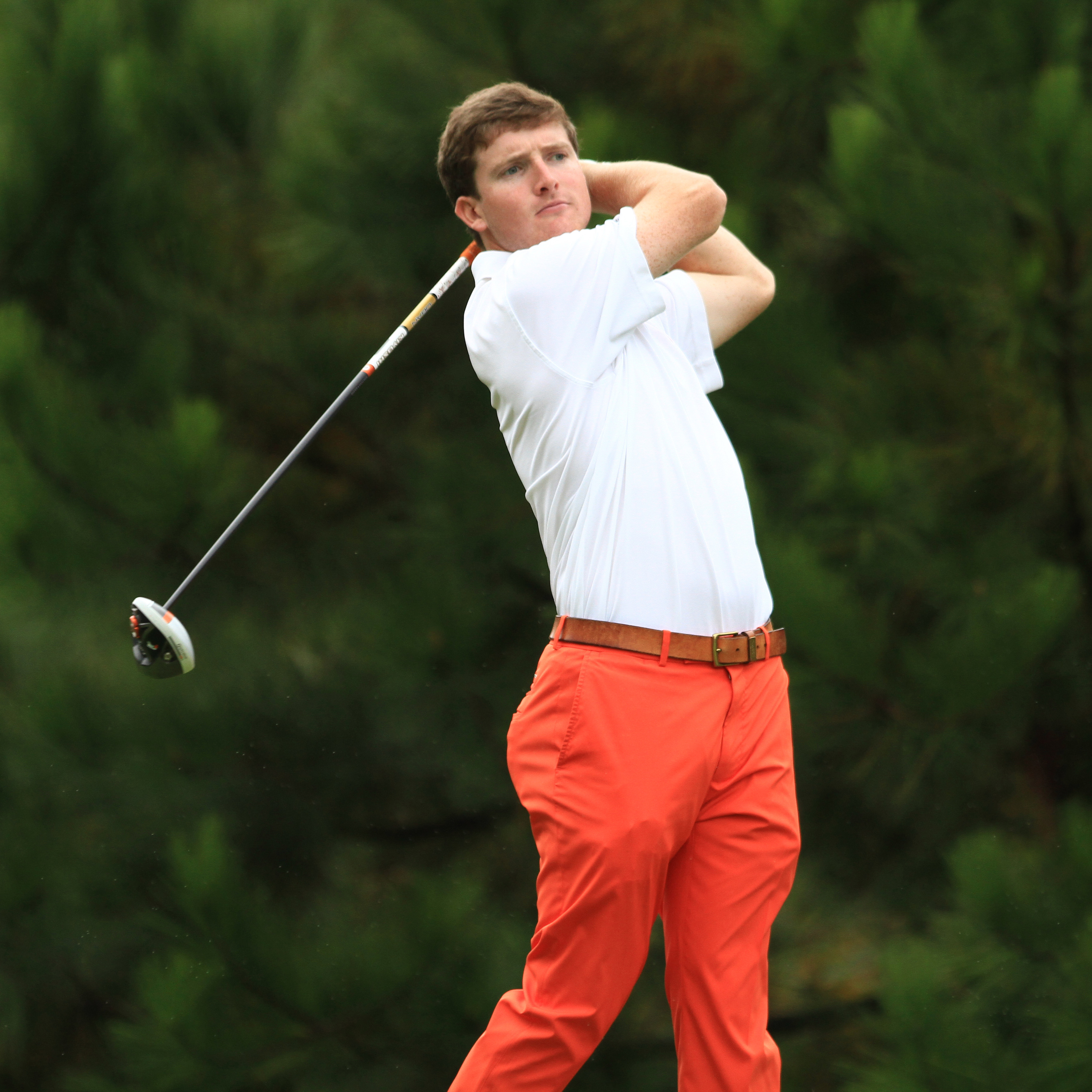 Tigers Lead Hummingbird Invitational
