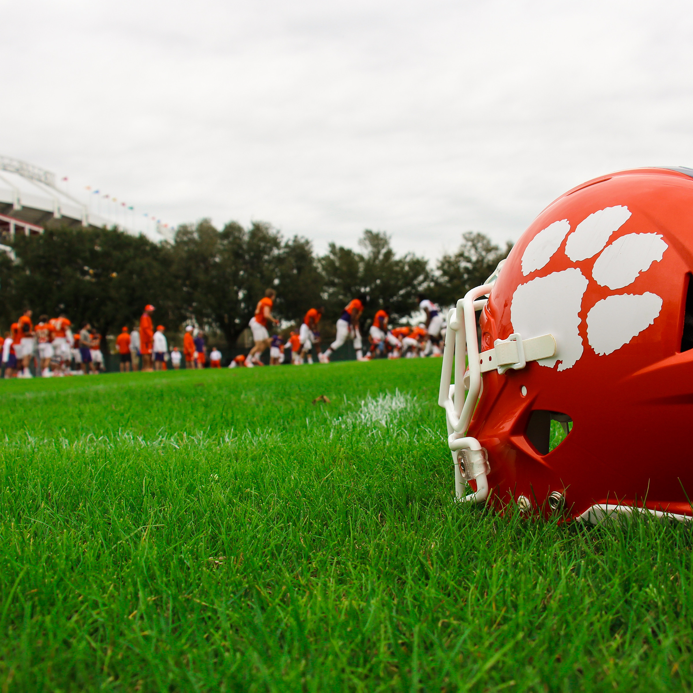 Tigers Hold Final Practice in Pads