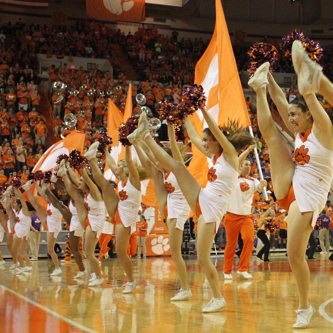 2015 Spirit Squad Youth Clinic to be held Jan. 18