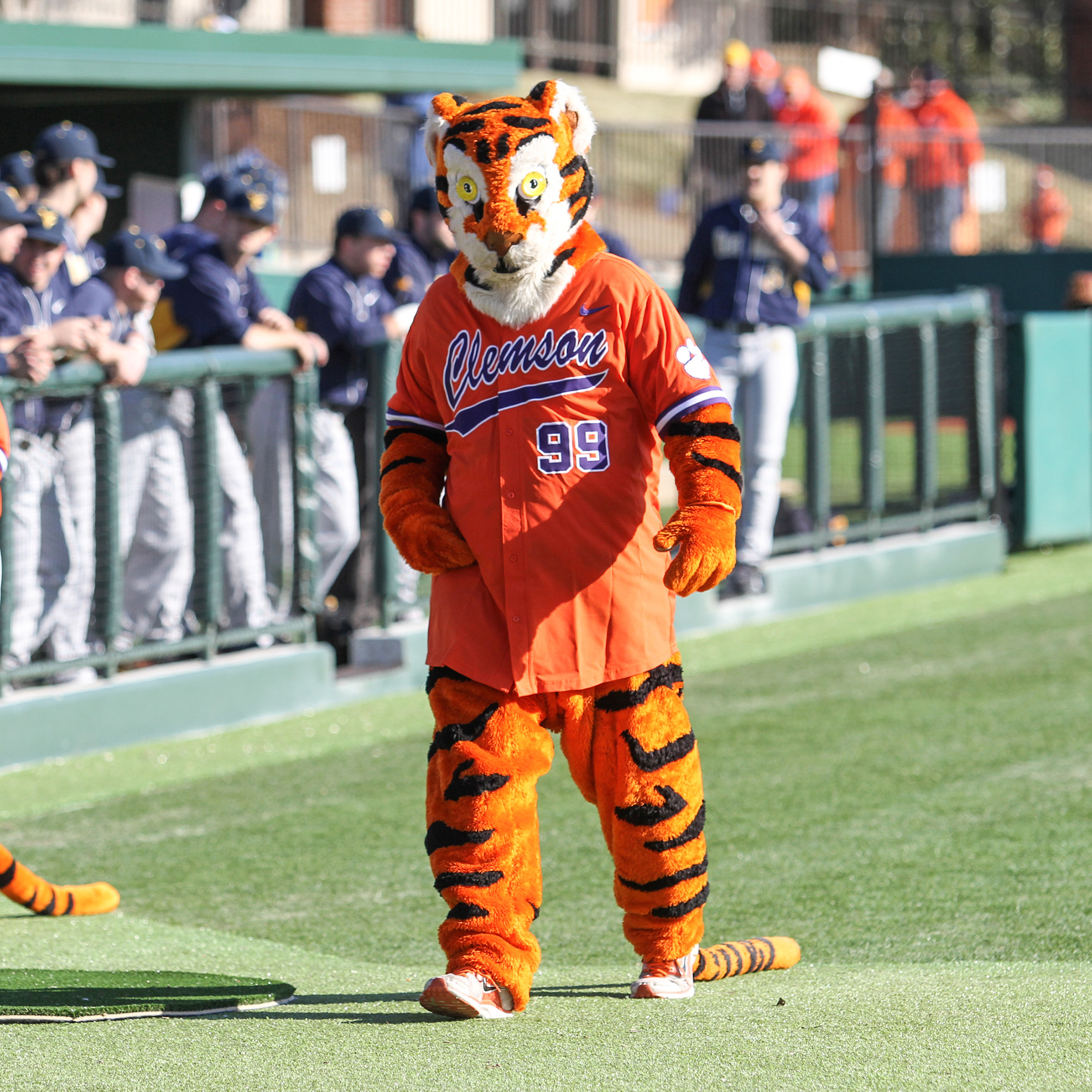 Clemson University 2015-16 Mascot Tryout Information