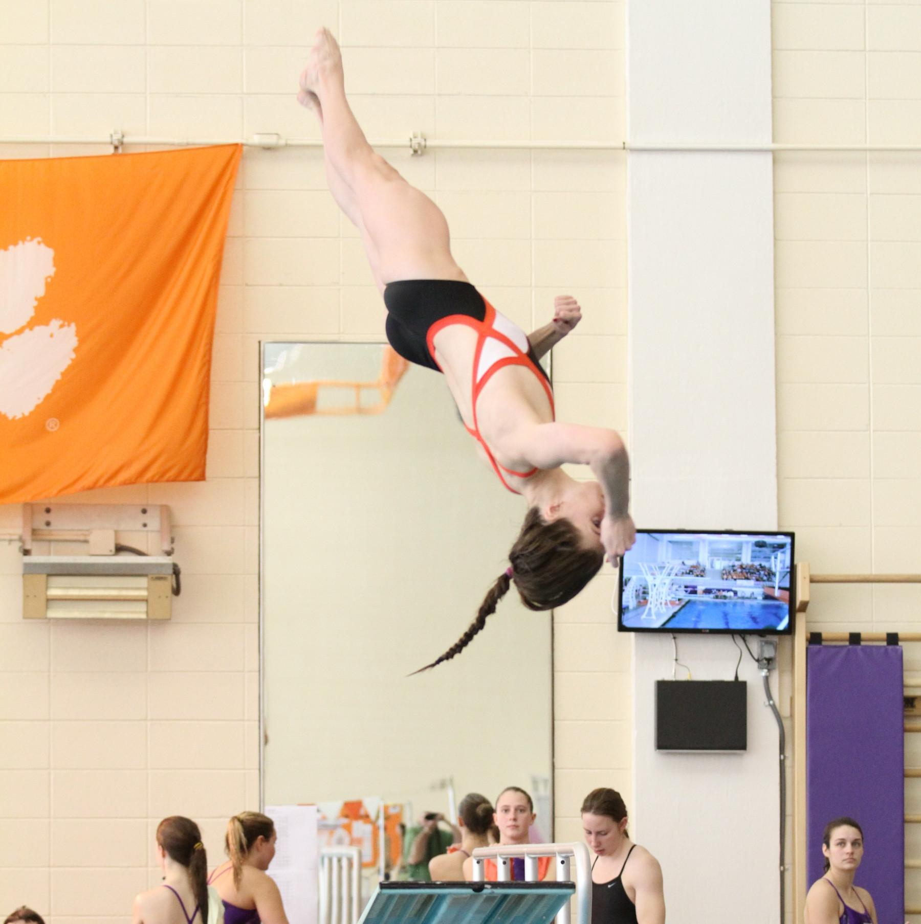 Tigers Conclude Competition at Shamrock Invitational & JMU
