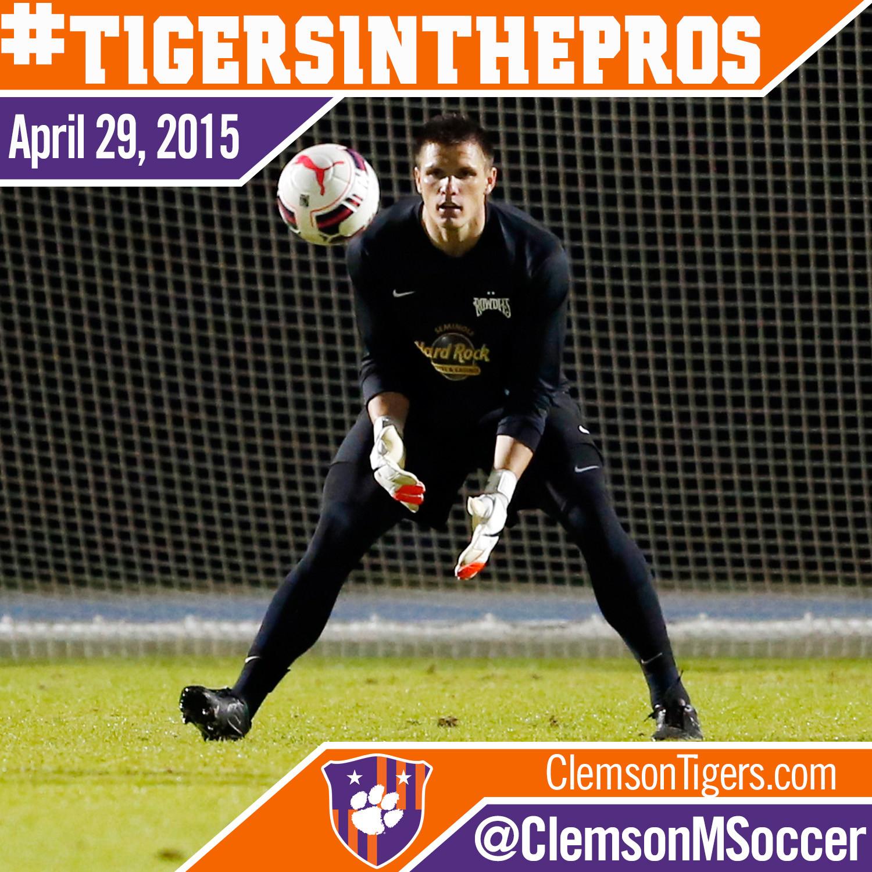 #TigersInThePros – Goalie Gloves