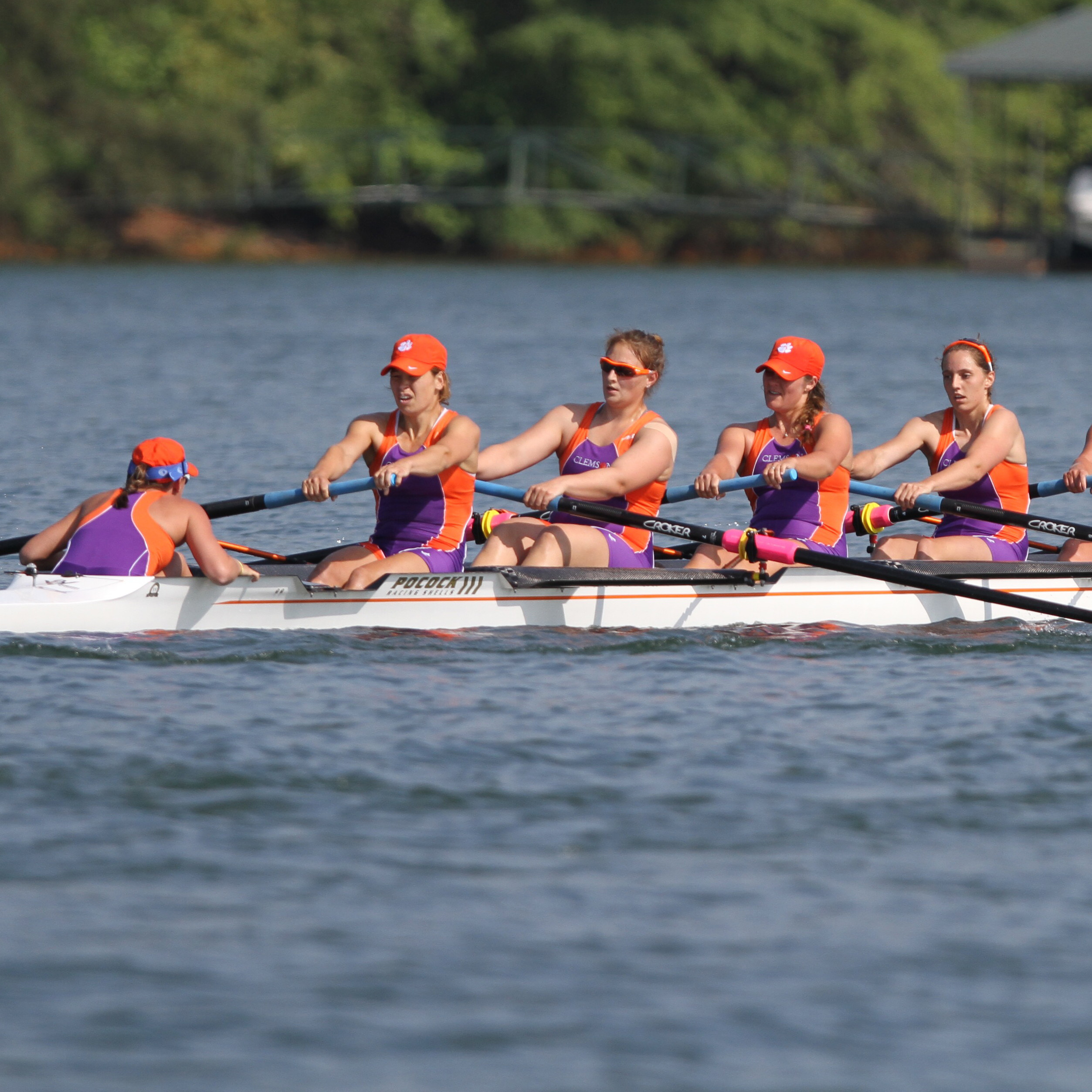 Tigers Place Eight on All-ACC Academic Team