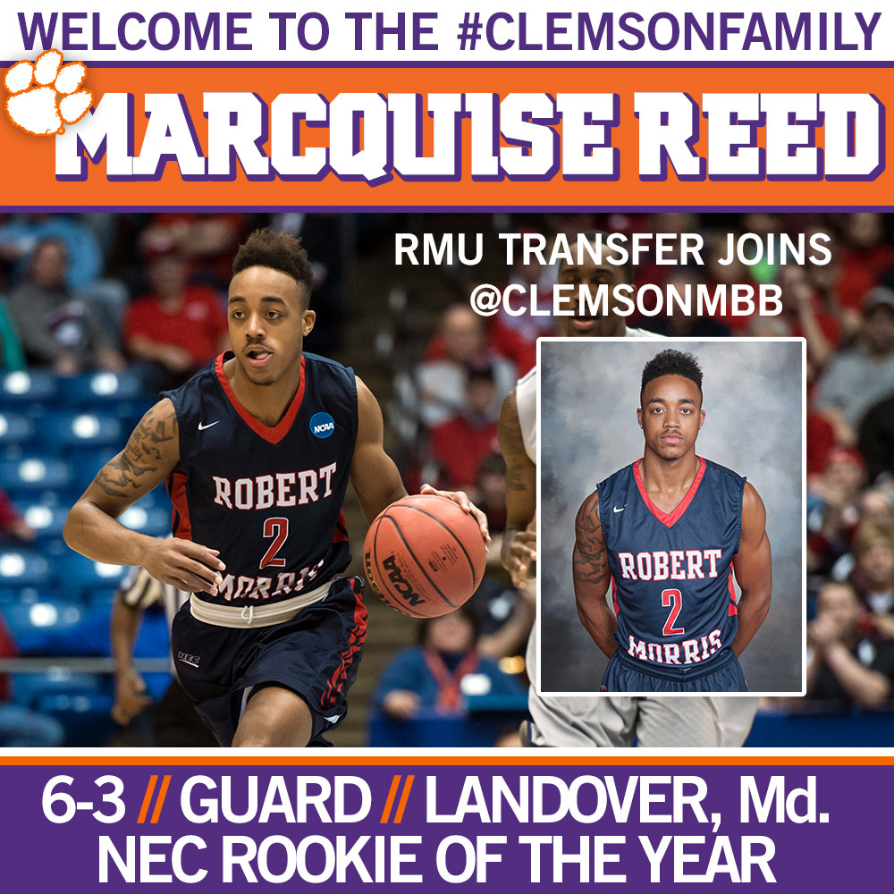 Tigers Add Transfer Marcquise Reed