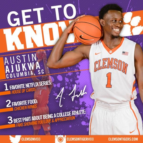Get To Know Your Tigers