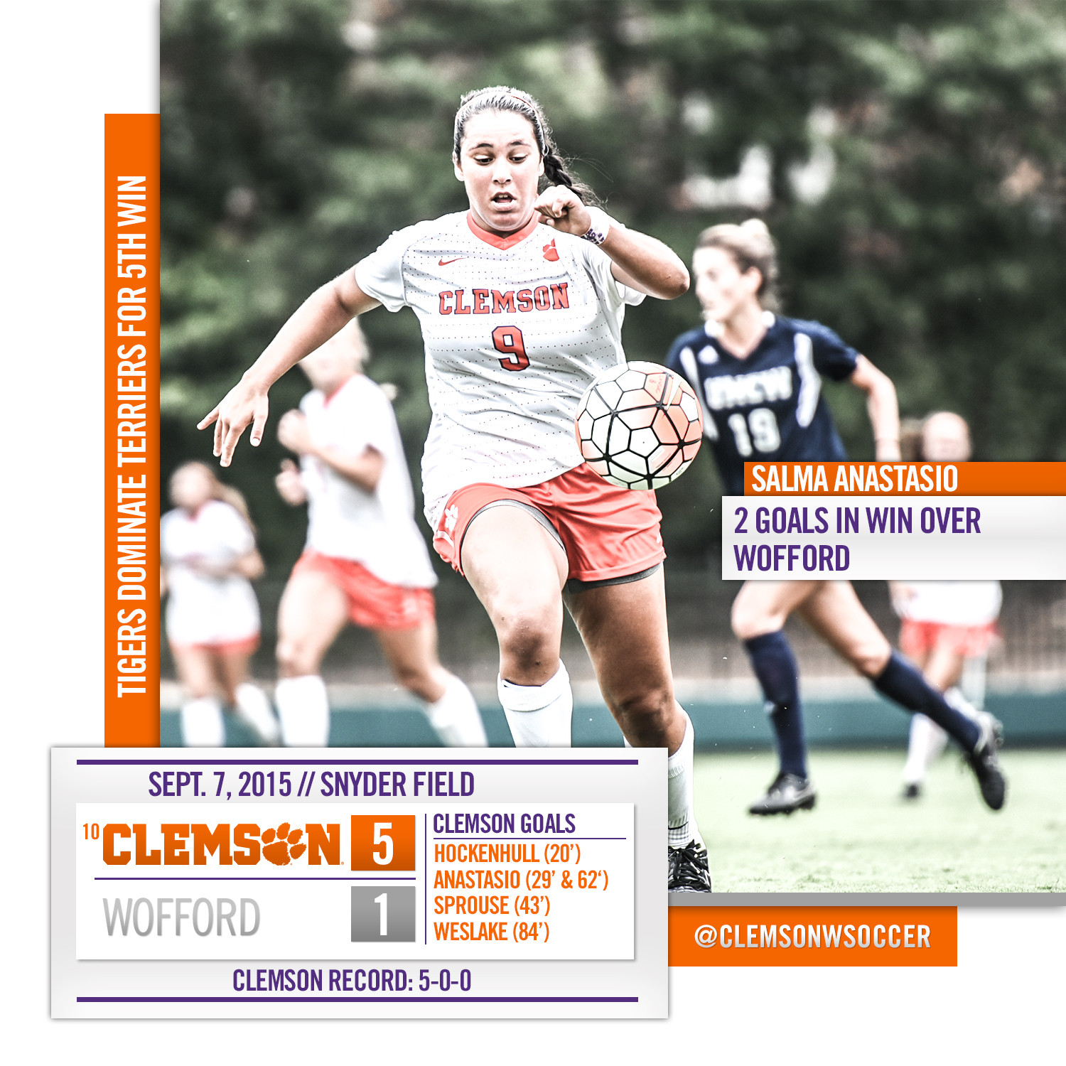 Tigers Dominate Terriers