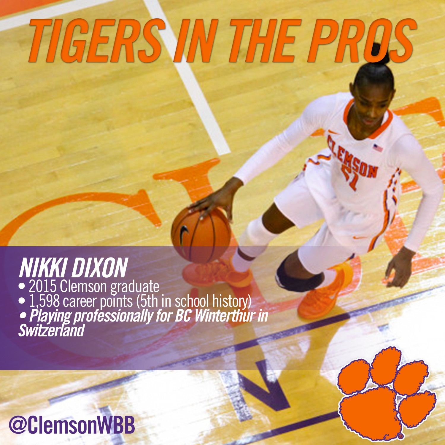 Tigers in the Pros: Nikki Dixon