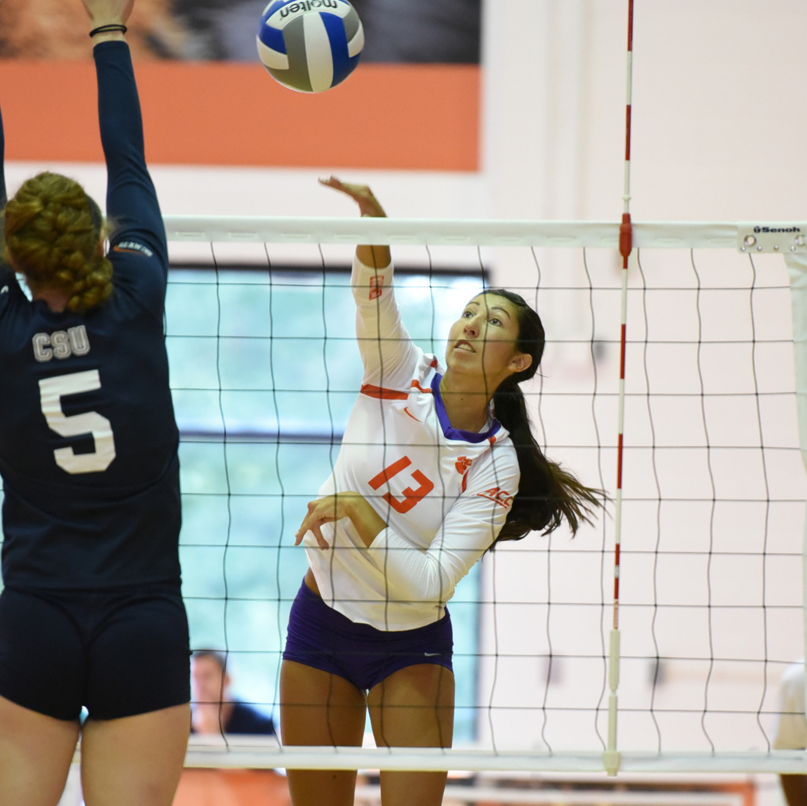 Clemson Edged By South Carolina