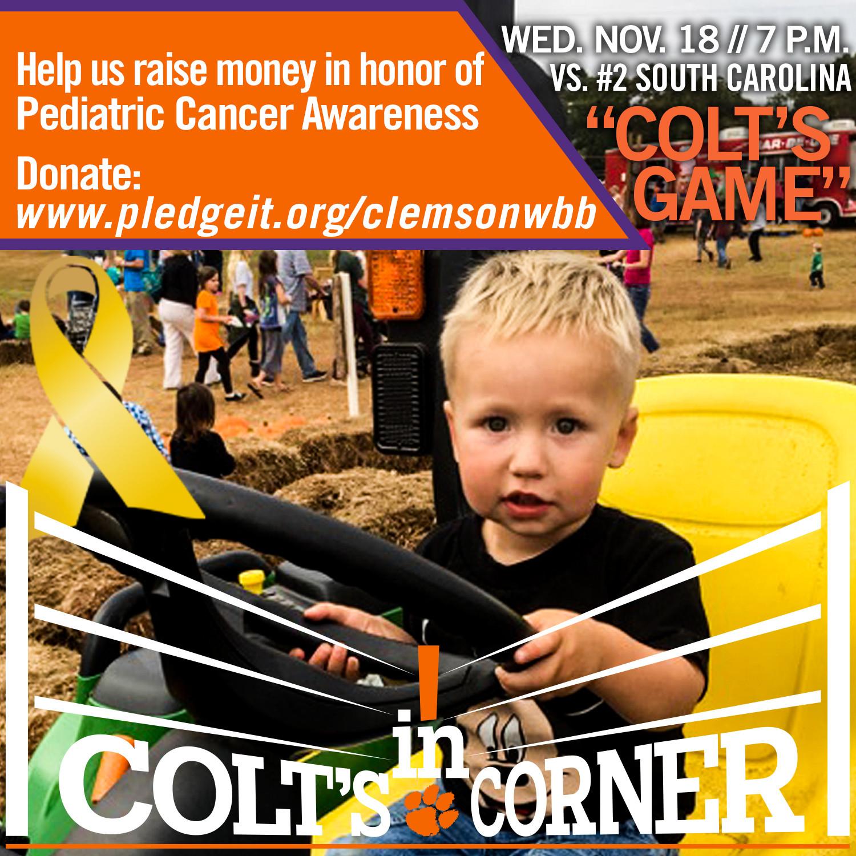 Tigers Host #2 South Carolina in Pediatric Cancer Awareness Game