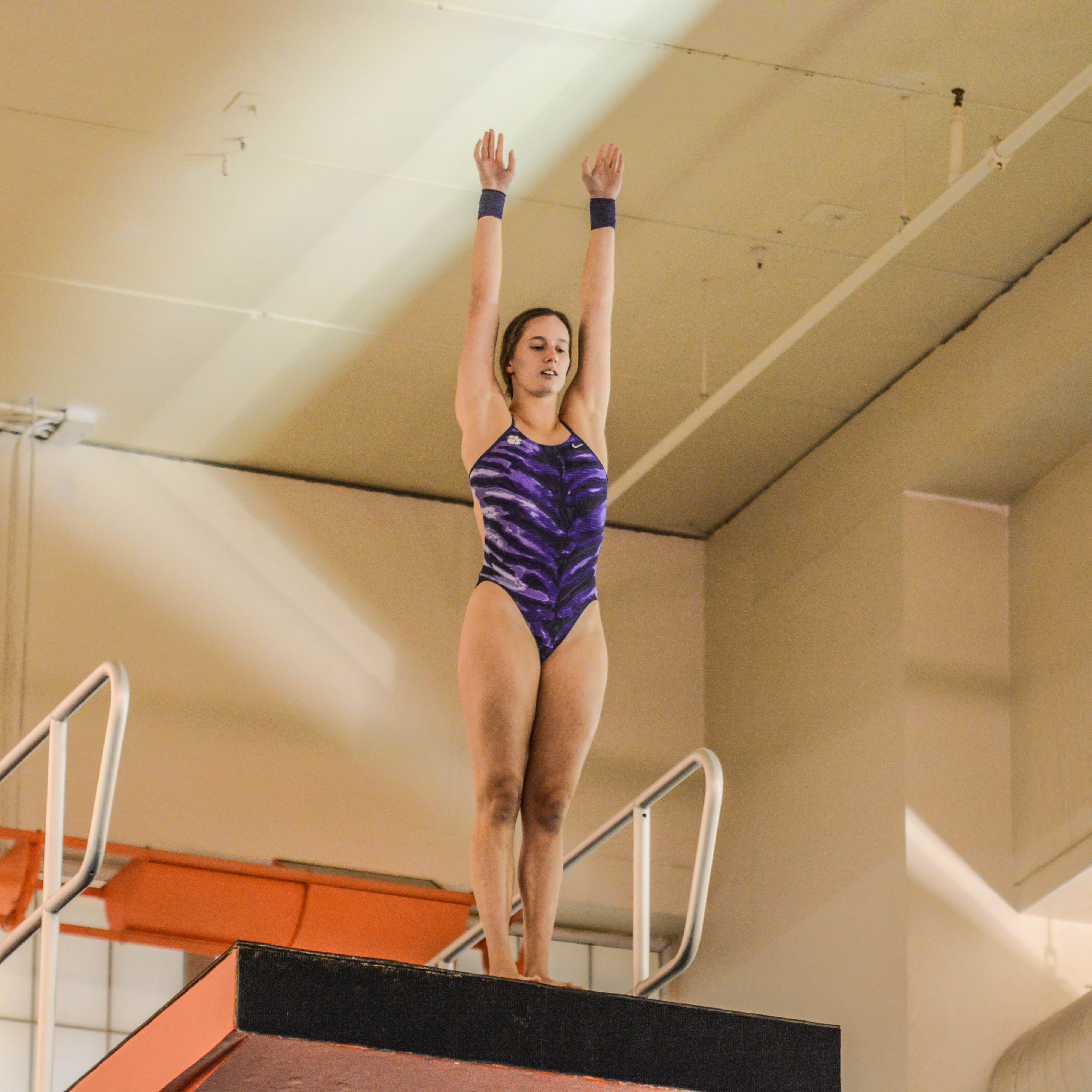 Tigers Open 2016 at UGA Diving Invite Jan. 3-5