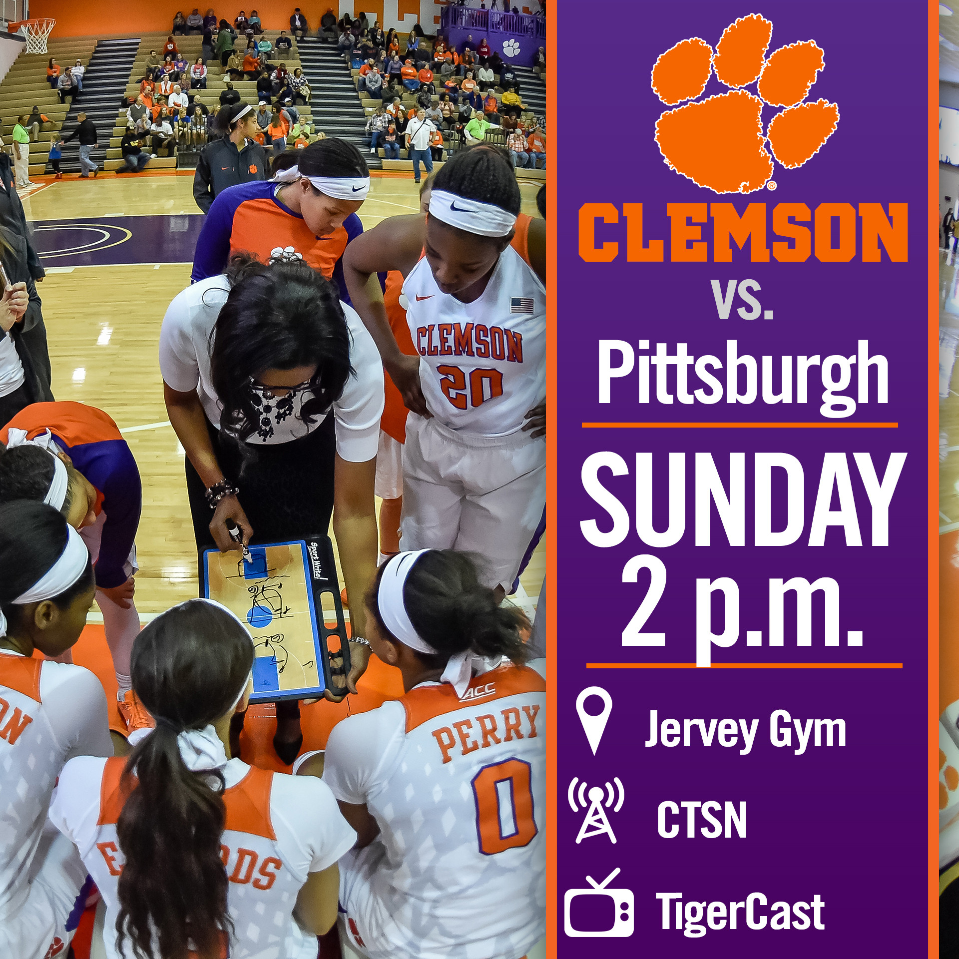 Lady Tigers Host Pitt on Sunday