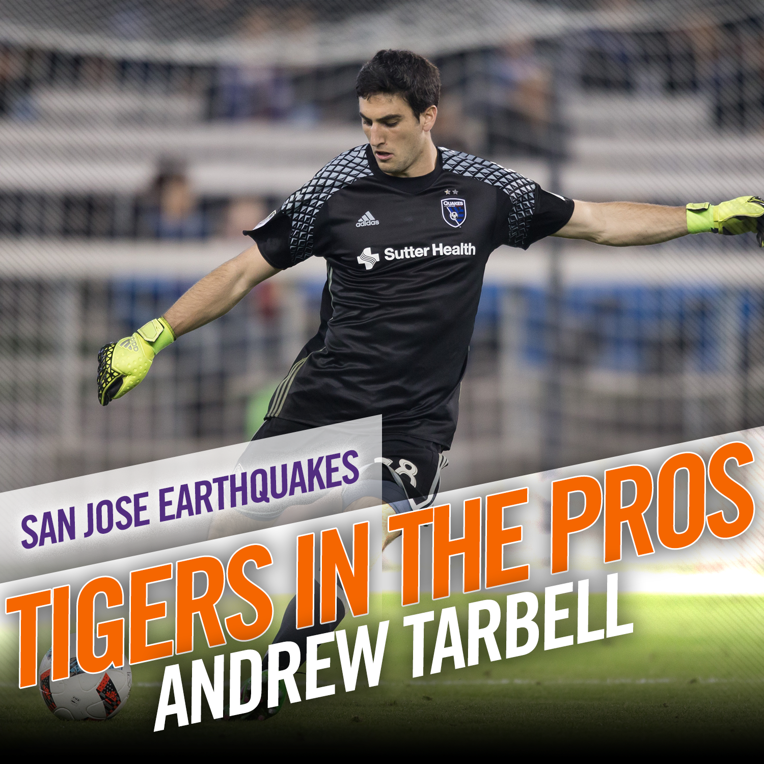 Tigers Look to Finish Professional Preseason Strong