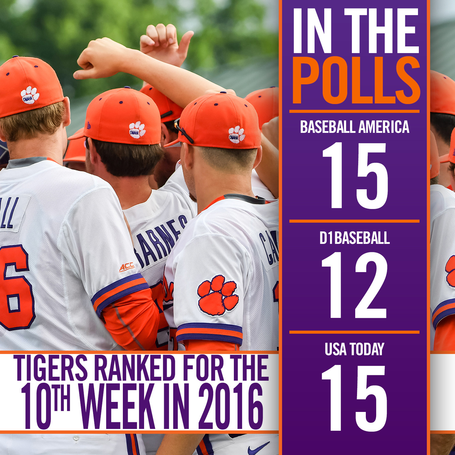 CU Enters Top 15 of the Polls