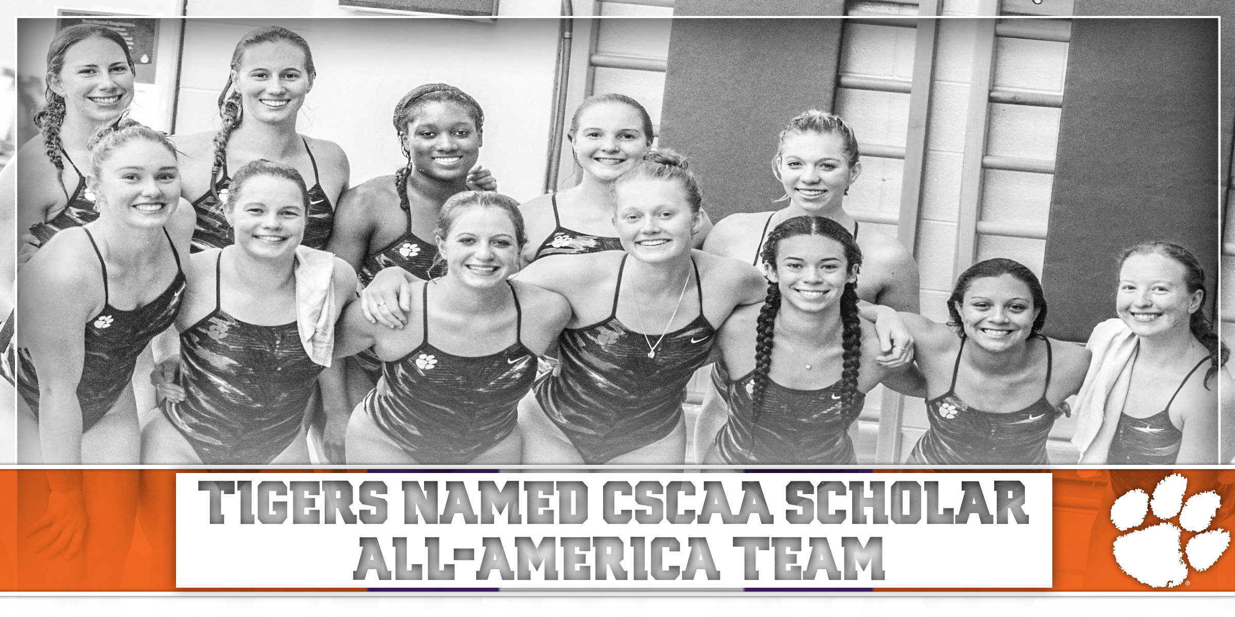 Tigers Earn CSCAA Scholar All-America Honors for Eighth Consecutive Semester
