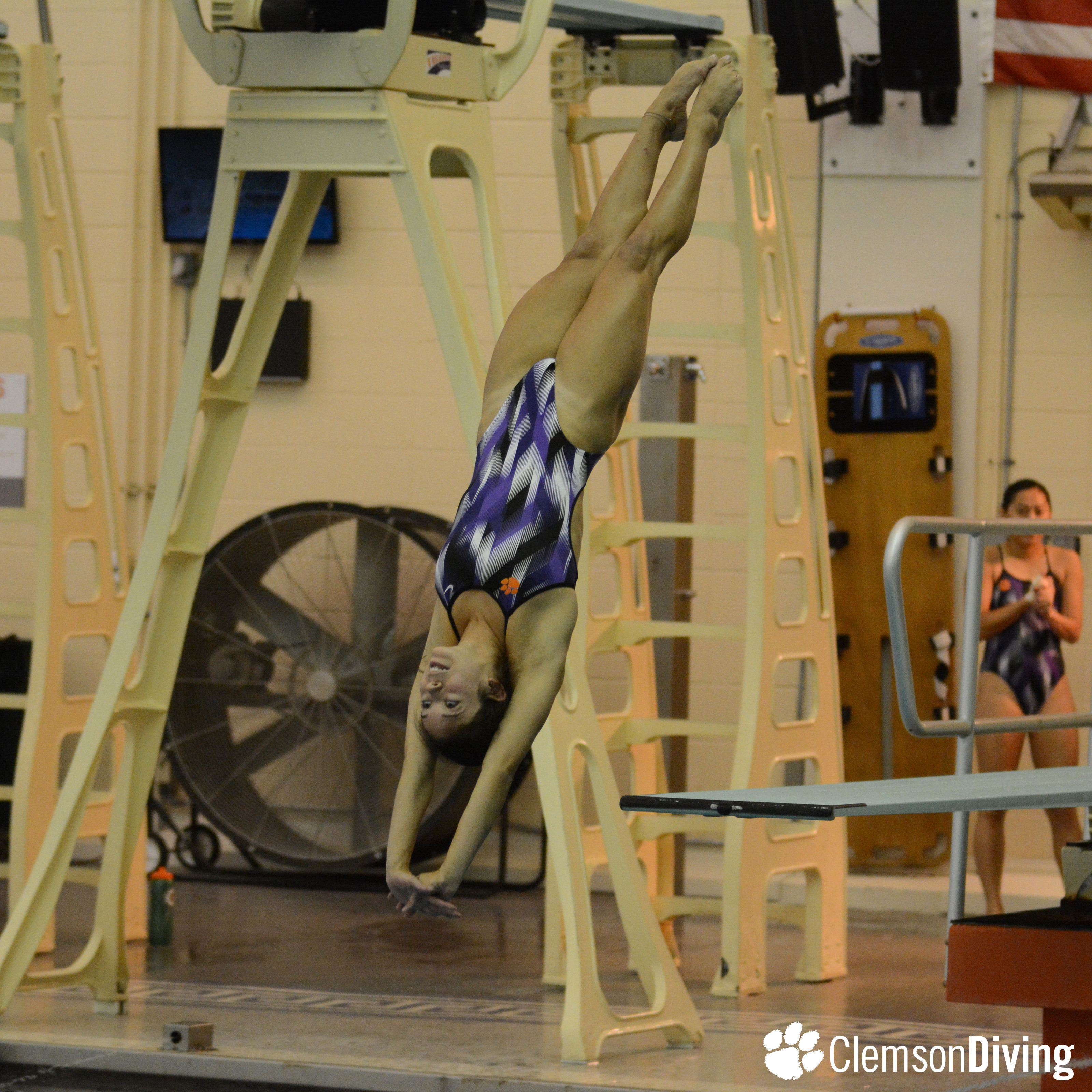 Two Tigers Qualify for Zones in Tri-Meet Win