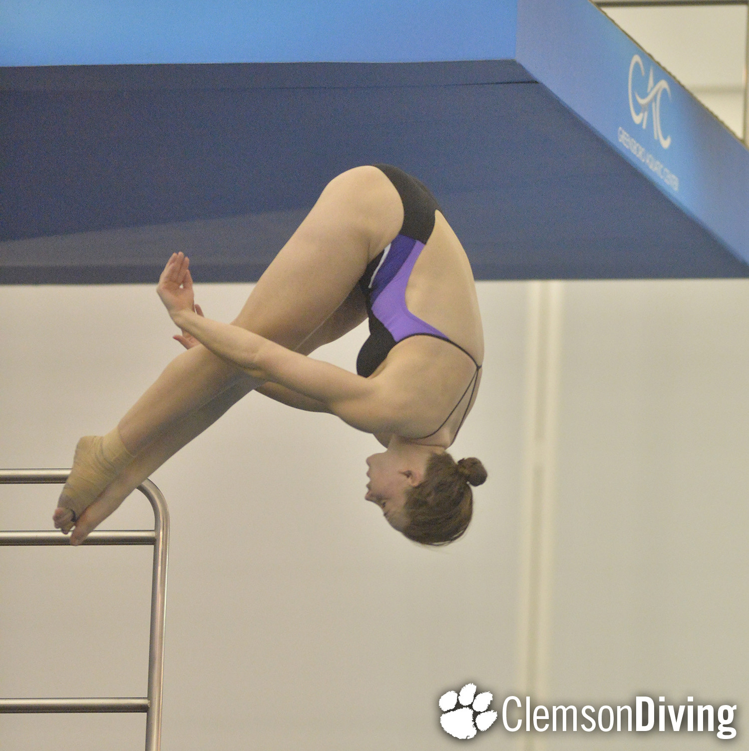 Divers Successful at UNC Wilmington to Open Season