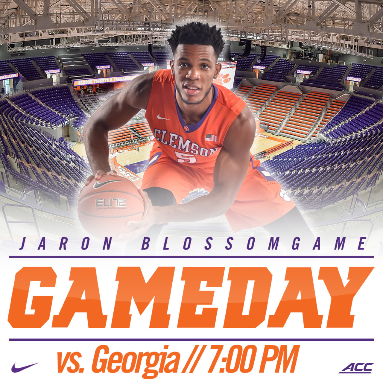 Tigers Face Georgia in Opener