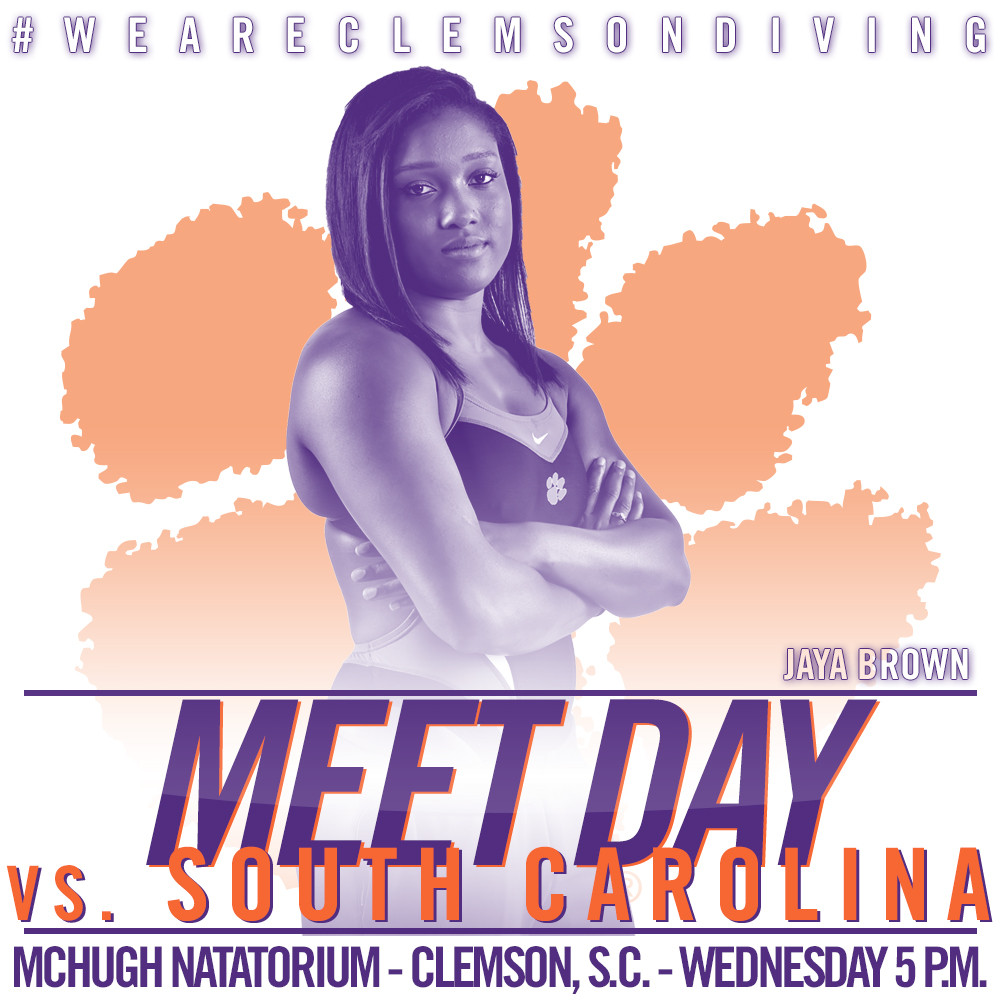 Tigers and Gamecocks to Face Off in McHugh Natatorium