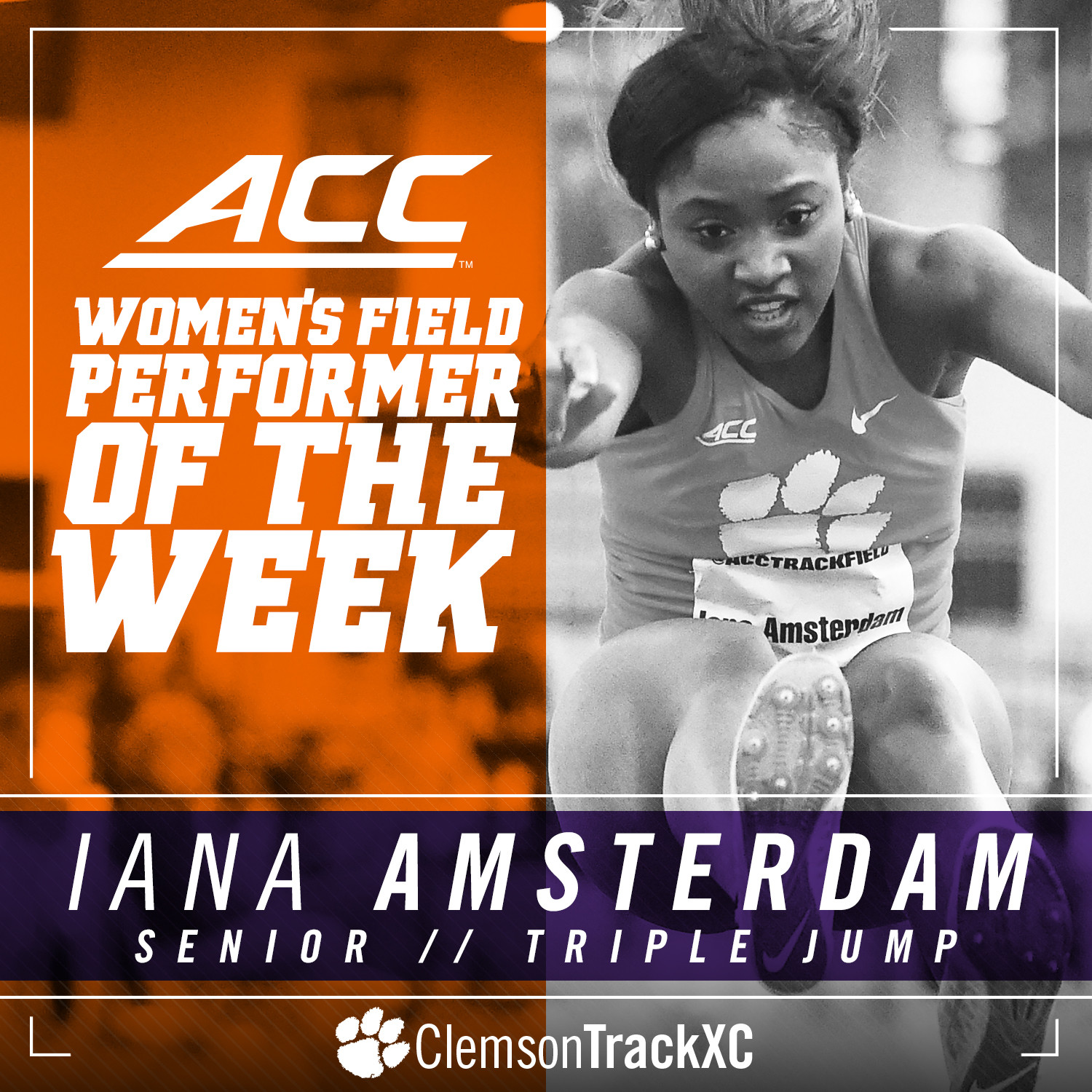 ACC Honors Amsterdam With Weekly Accolade