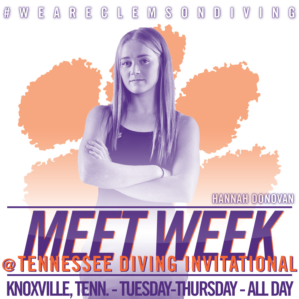 Tigers Kick Off 2017 at Tennessee Diving Invitational