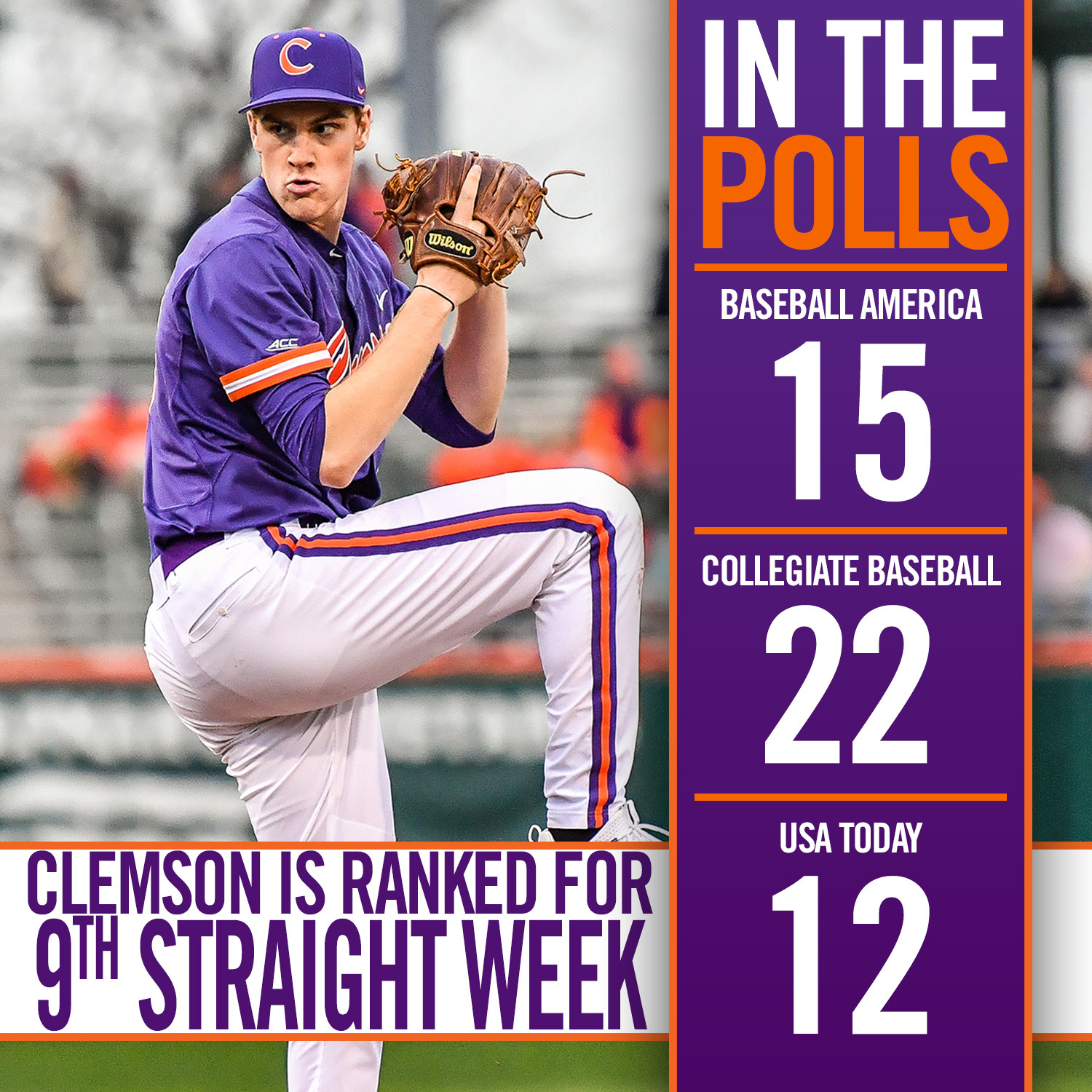 Tigers Ranked in Top 25