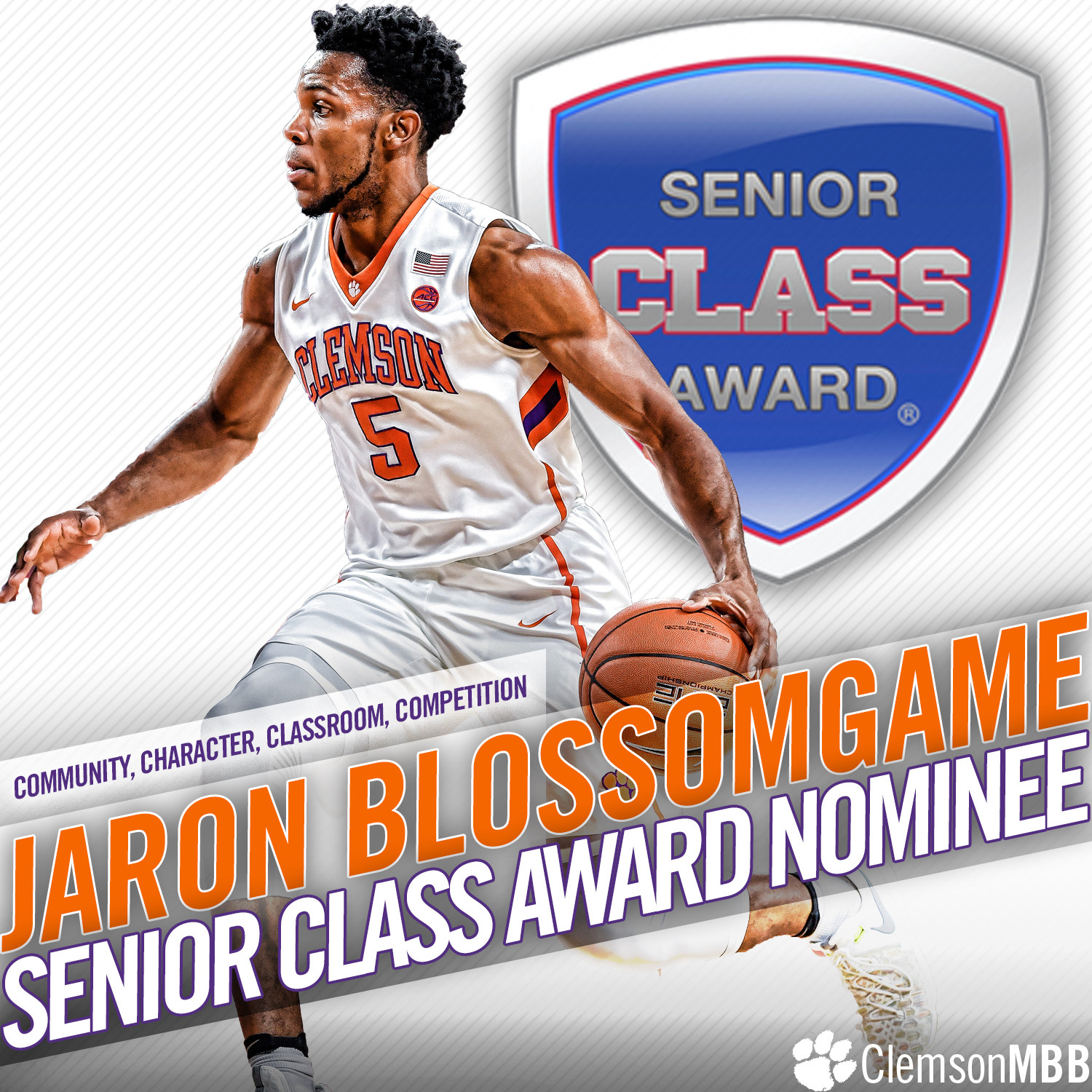 Blossomgame Finalist for Senior CLASS Award