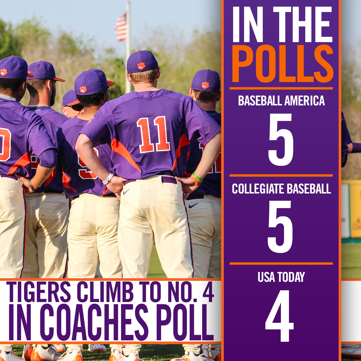 Tigers Top Five in All Polls
