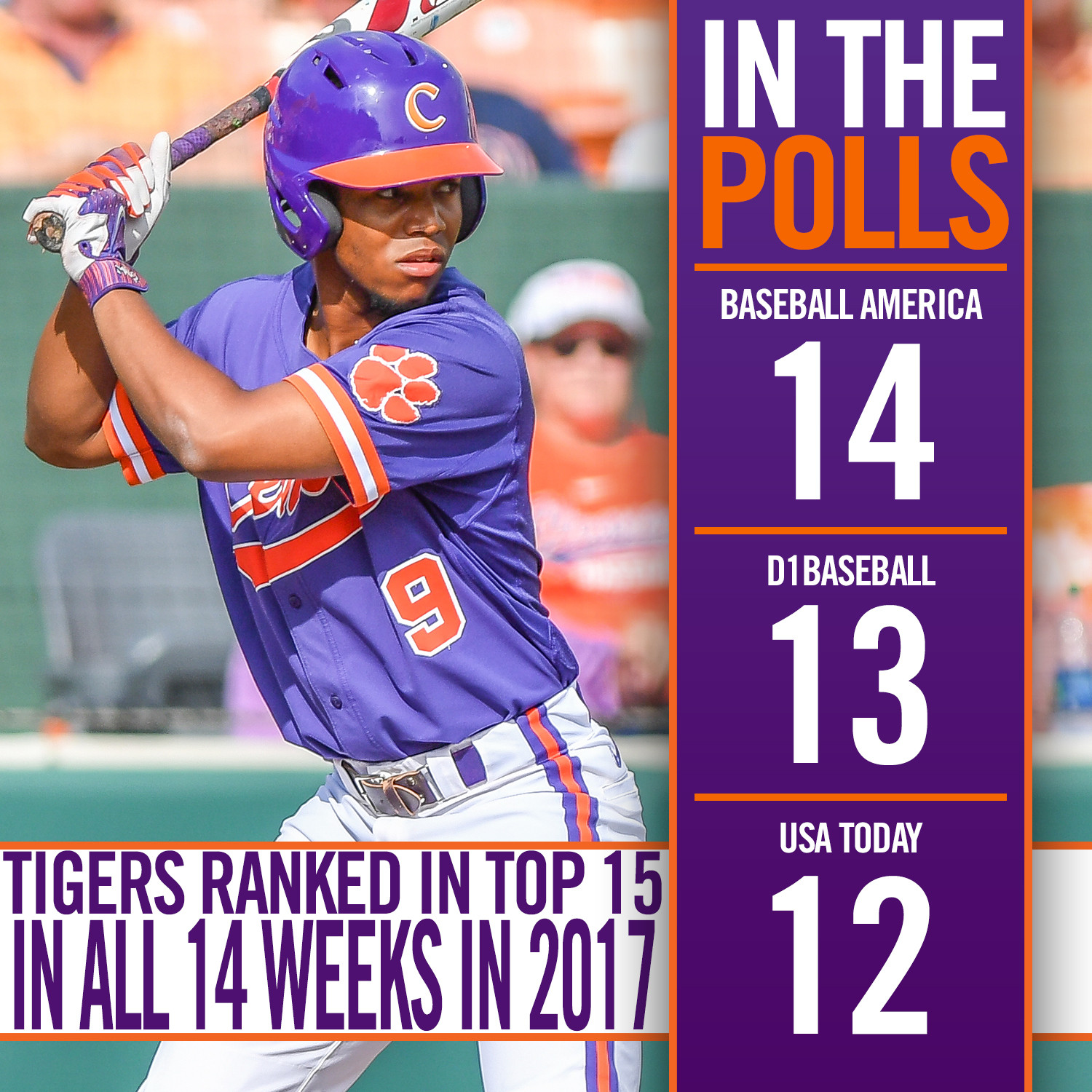 Tigers No. 12 in Coaches Poll