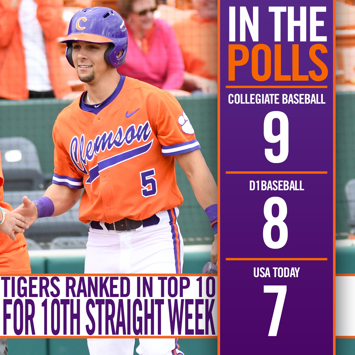 Tigers Ranked in Top 10