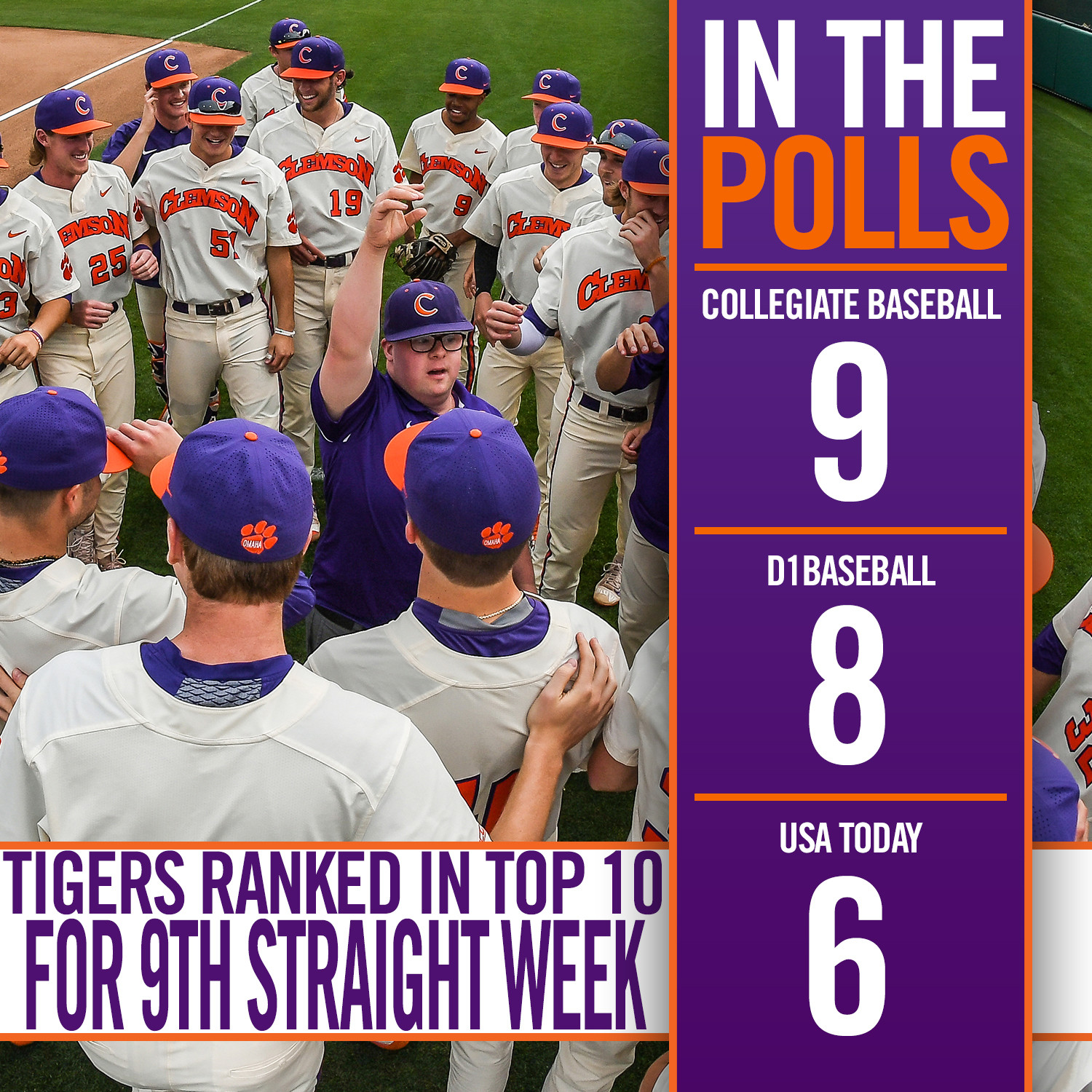 Tigers No. 6 in Coaches Poll