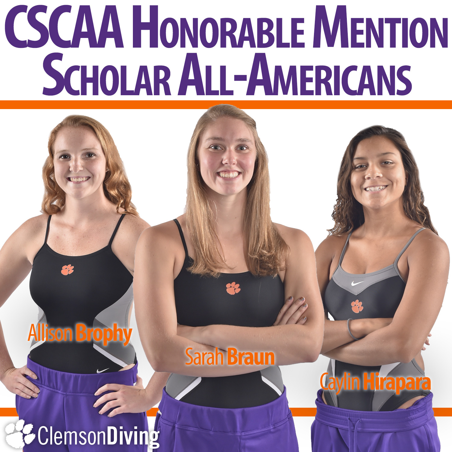 Tigers Named CSCAA Scholar All-America Team for 10th Straight Semester, Three Divers Named CSCAA Honorable Mention Scholar All-Americans