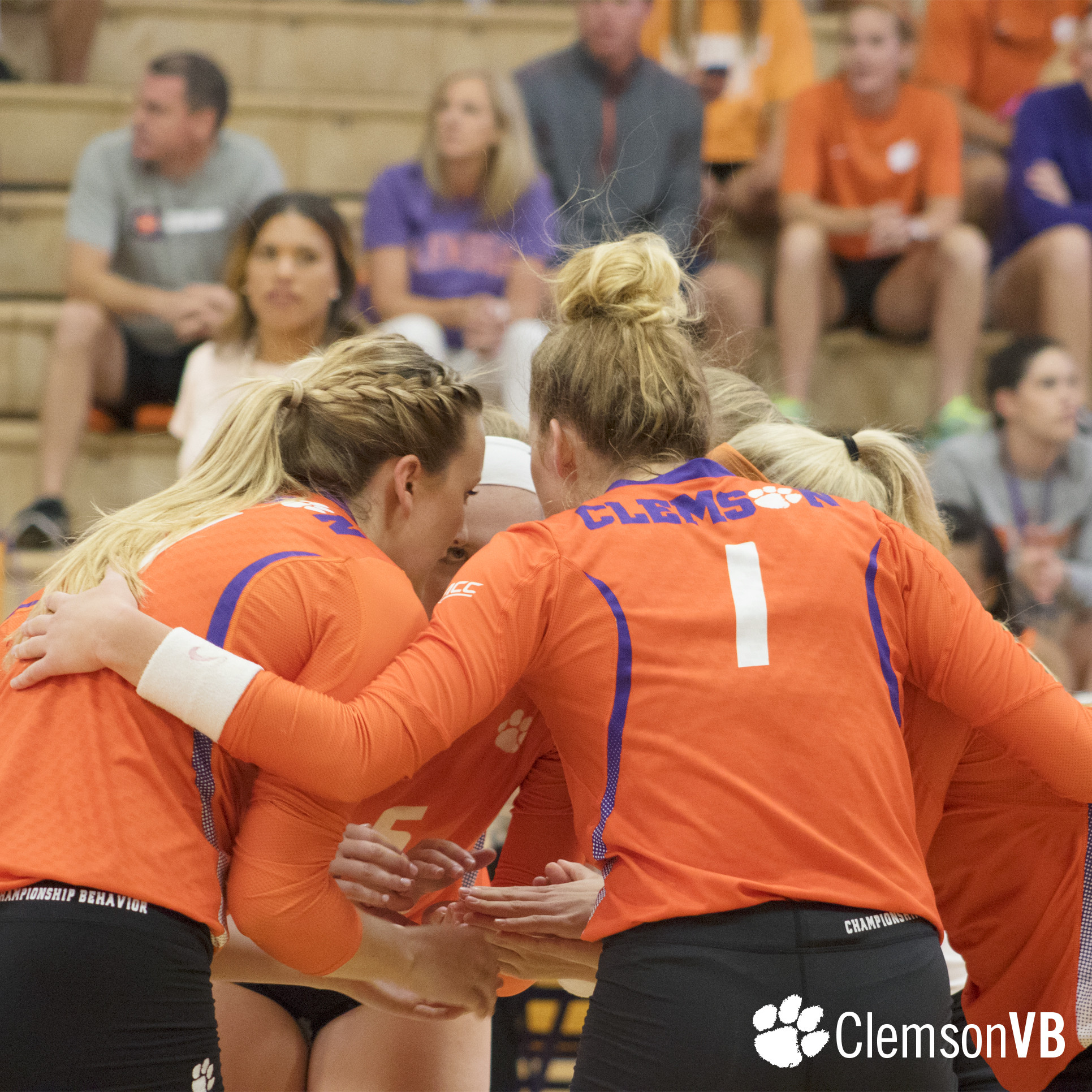 Volleyball Falls to Kennesaw State