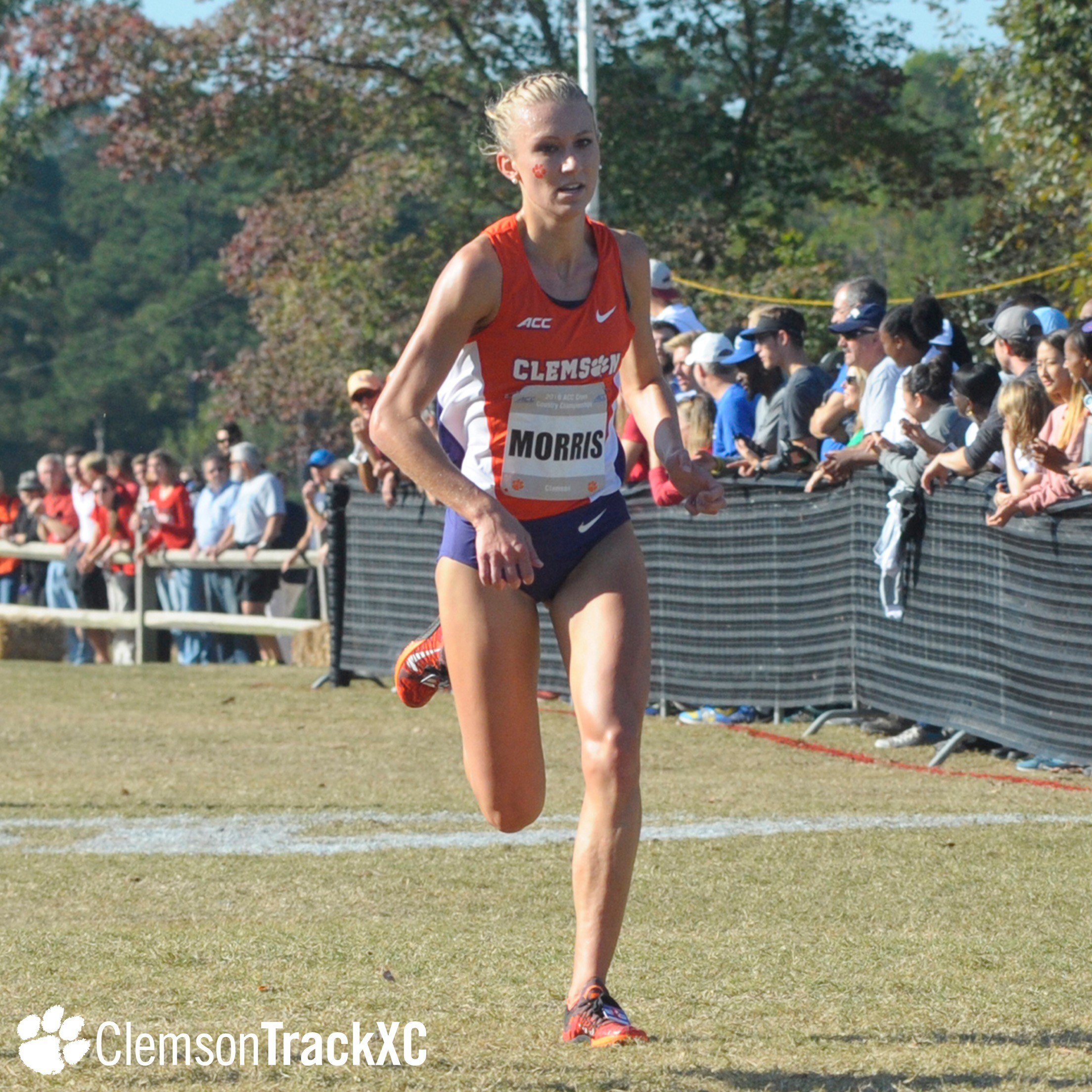 Cross Country to Race in Furman Invitational Saturday